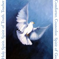 Dove flying with names of the Holy Spirit T-Shirt Thumbnail